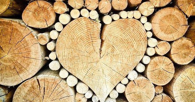 dřevo-628x330